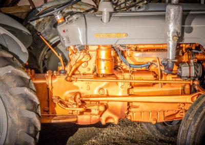 Ferguson engine detail